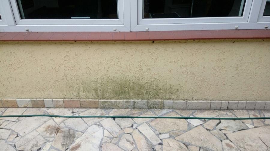 Czyszczenie muru - przed