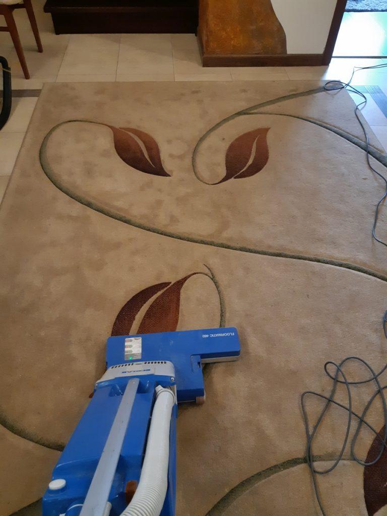 pranie dywanu - odkurzanie dywanu przed czyszczeniem
